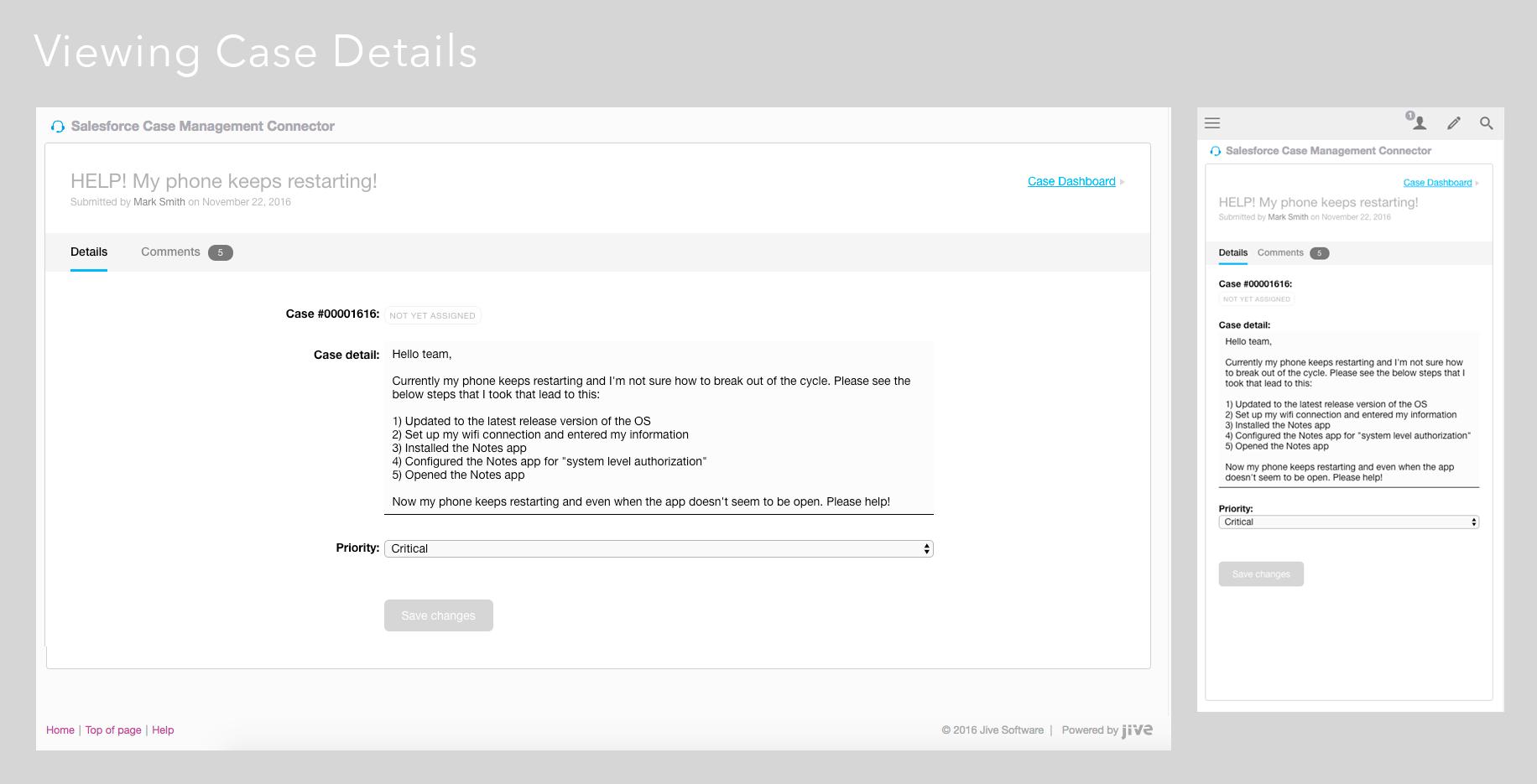 Salesforce Case management jive integration detail view
